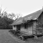 Cabin on Ames Plantation